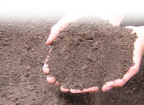 How gnld super gro solve farmer s challenges online for The soil 02joy