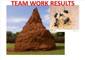 TEAM WORK 1